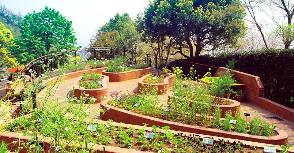關西旅遊-神戶布引香草園(含交通攻略):園裡滿是清香的散步約會聖地 @愛旅行 - 右上的世界食旅