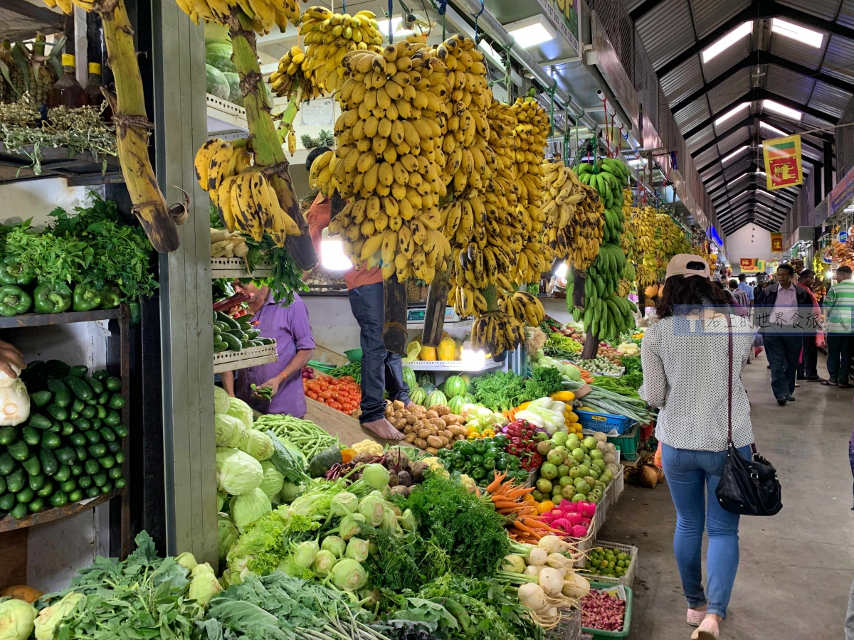 斯里蘭卡旅遊的7個理由+9天自由行規劃、必買推薦 @右上的世界食旅