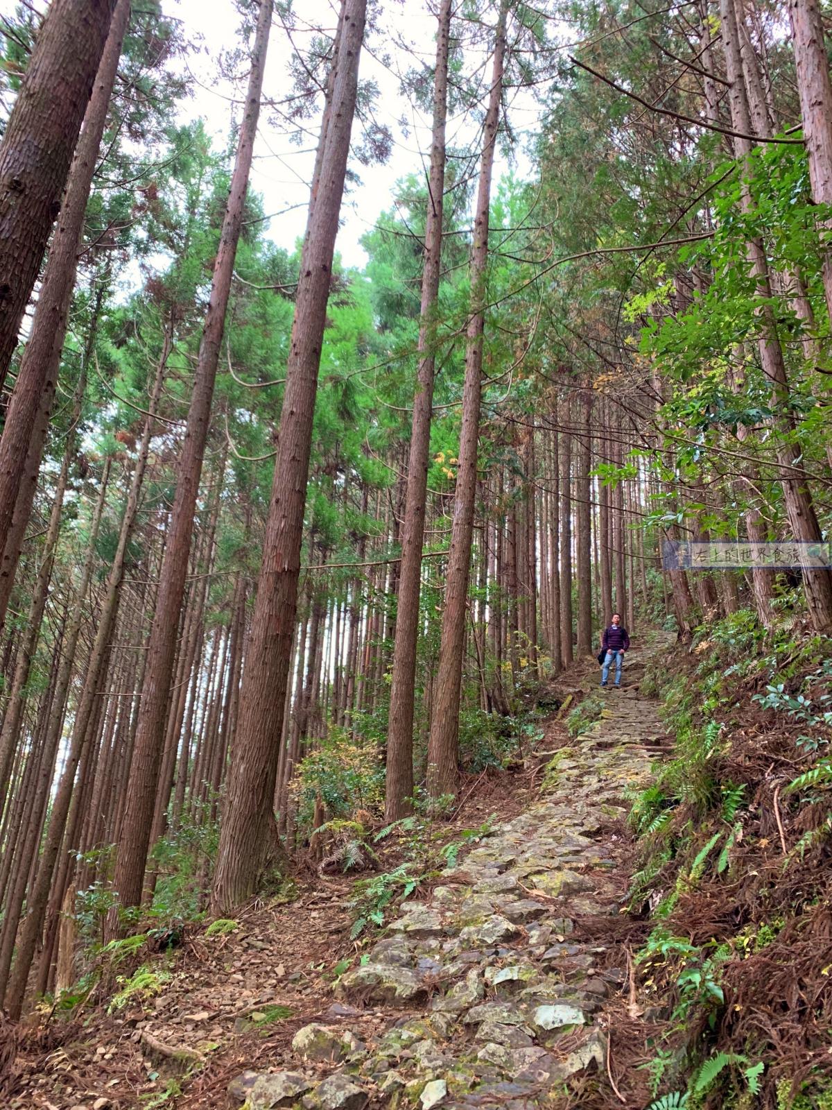 和歌山旅遊|昴之鄉溫泉:拜訪熊野本宮大社推薦住宿/拜訪最美秘境村莊:果無集落 @右上的世界食旅