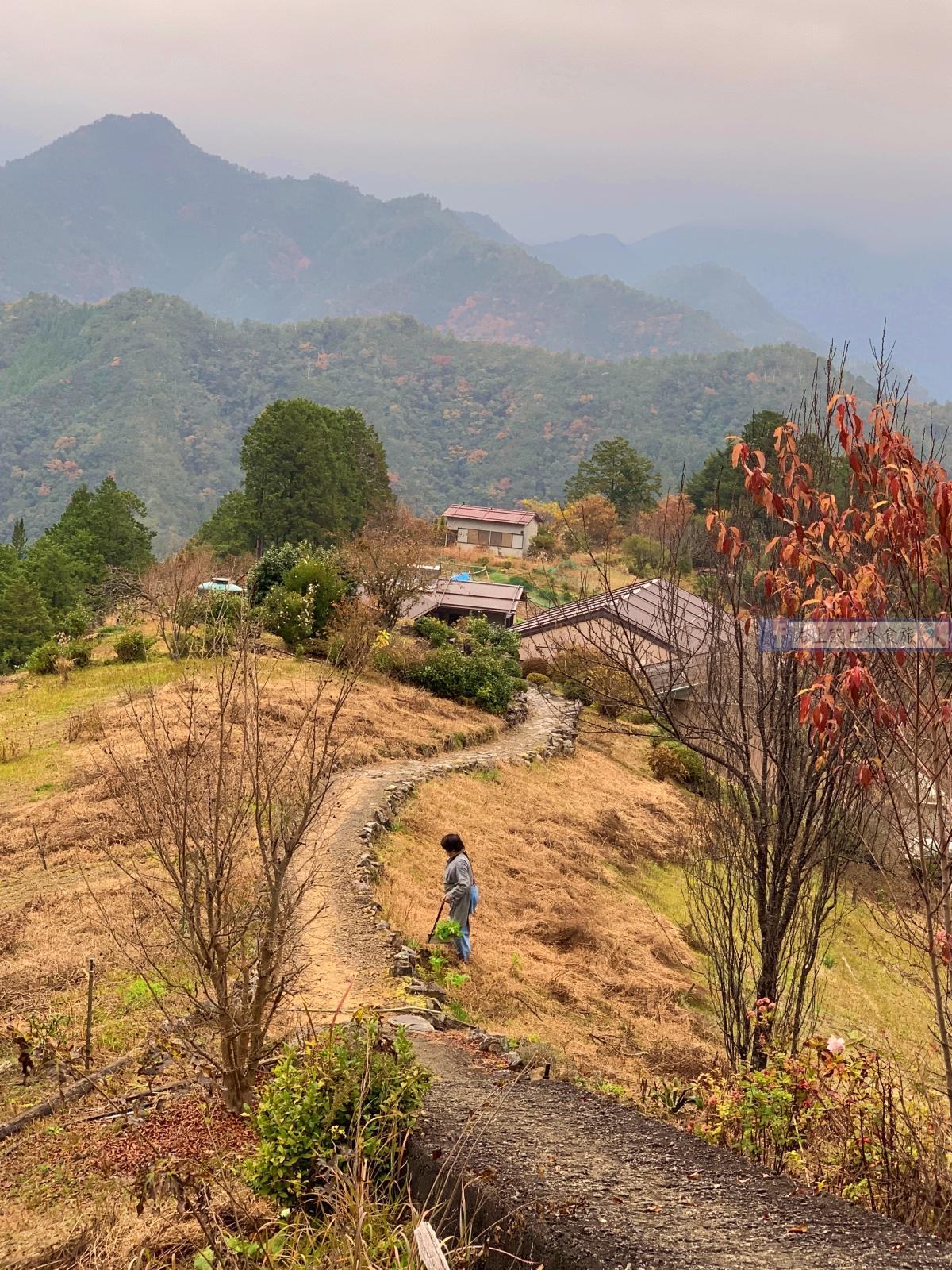 和歌山 昴之鄉溫泉:拜訪熊野本宮大社推薦住宿/拜訪最美秘境村莊:果無集落 @右上世界食旅