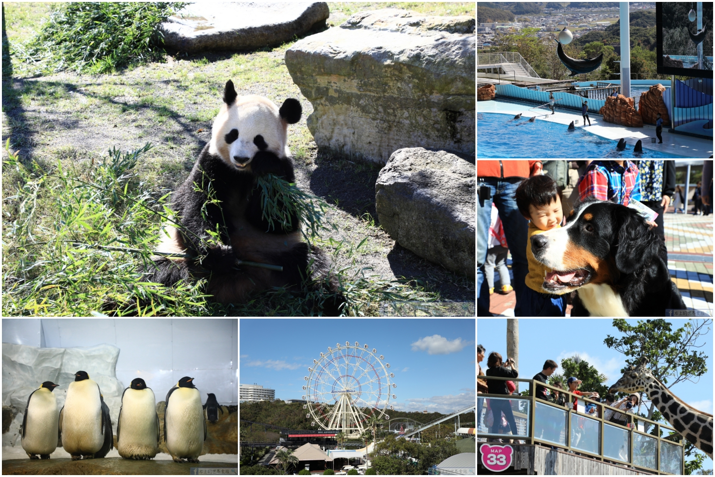 和歌山旅遊|日本最古老溫泉:湯之峰溫泉、可泡溫泉的青旅:J-Hoppers Kumano Yunomine Guesthouse @右上的世界食旅