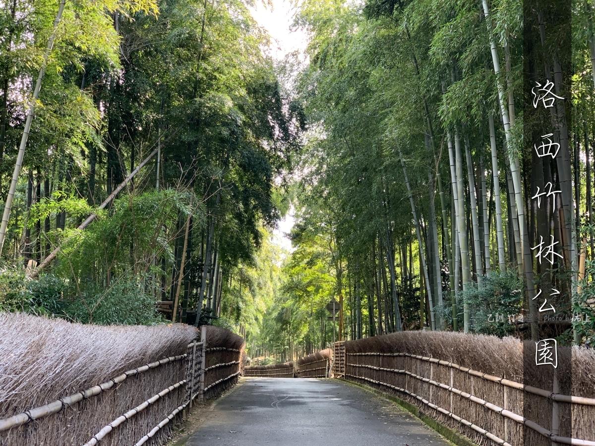 別再去嵐山人擠人!京都秘境:洛西竹林公園&日本最辣一條街美食:激辛商店街