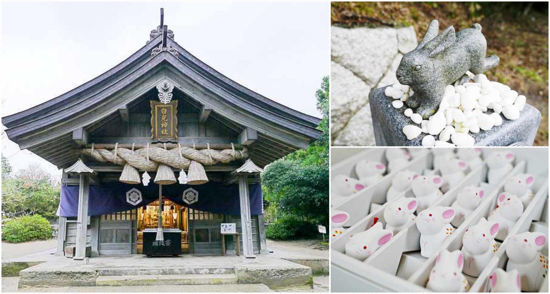 鳥取旅遊-白兔神社(含交通攻略):戀愛成就助攻+伴手禮攻略 @右上的世界食旅