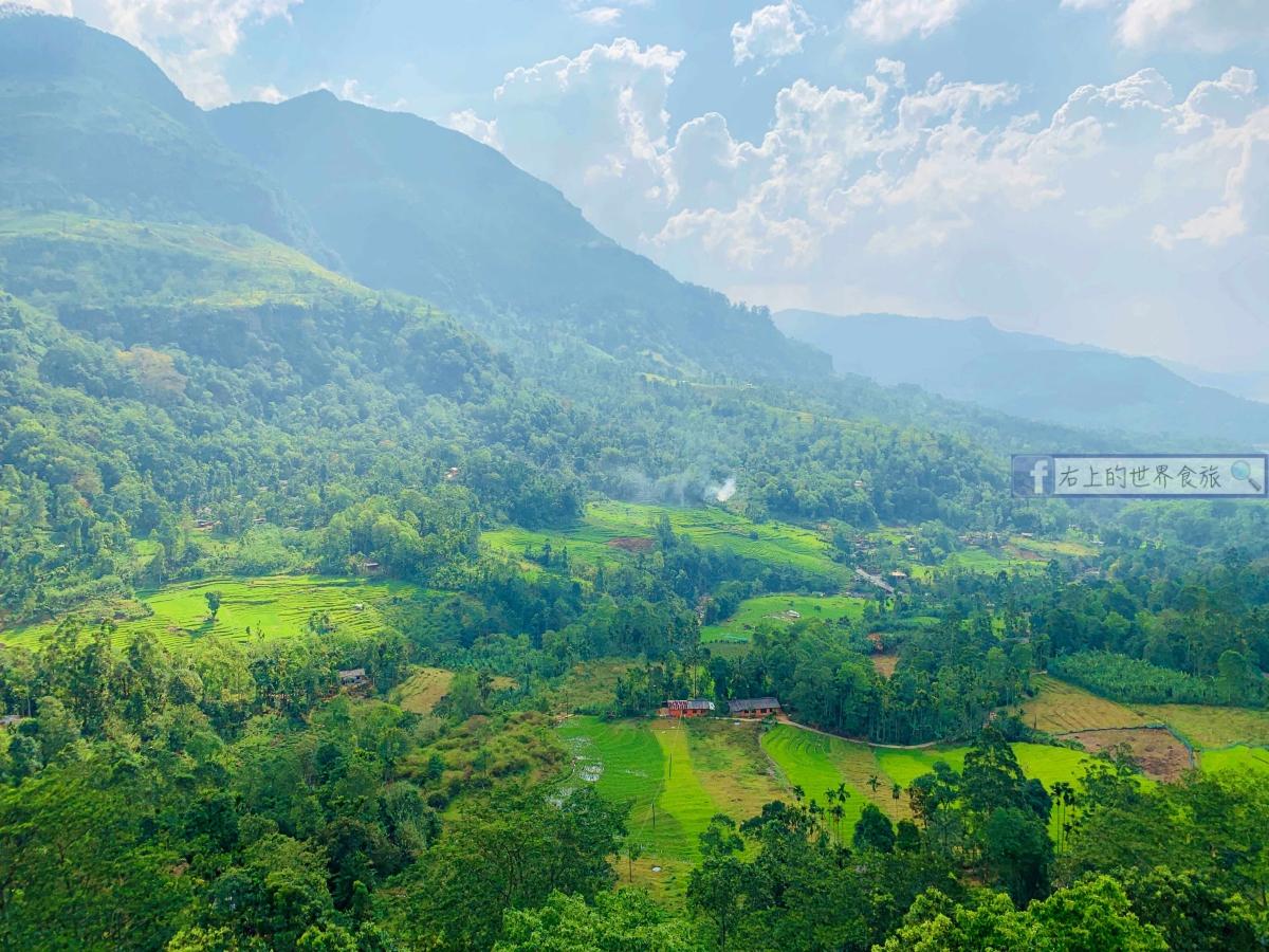 斯里蘭卡4|康提前往努沃勒埃利耶(Nuwara Eliya)DAMRO茶莊之旅&推薦英國風絕美飯店:Seasons Villa Nuwara Eliya @右上的世界食旅