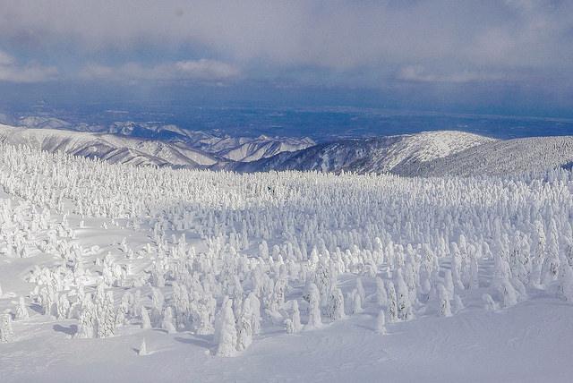 山形旅遊懶人包|超過50處住宿、美食、景點、購物全攻略