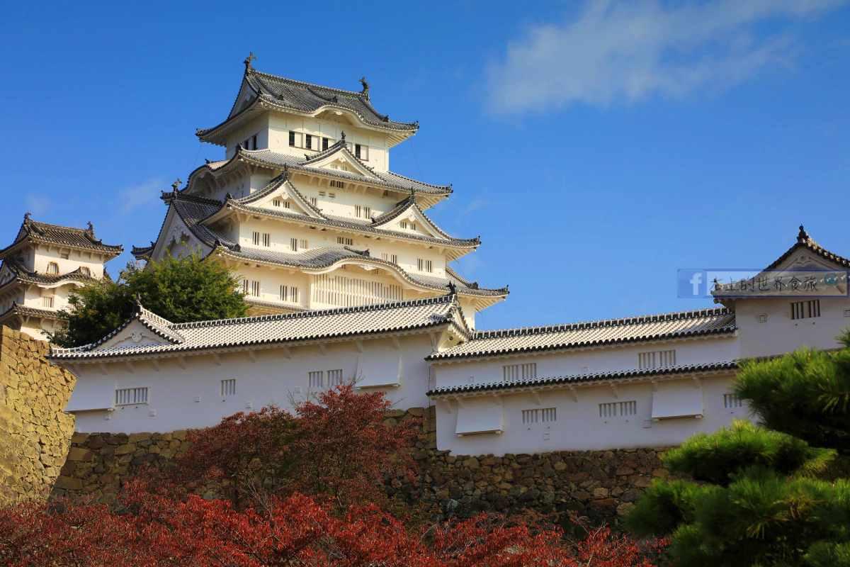 日本必遊的第一名城:姬路城,秋楓春櫻關西最佳景點