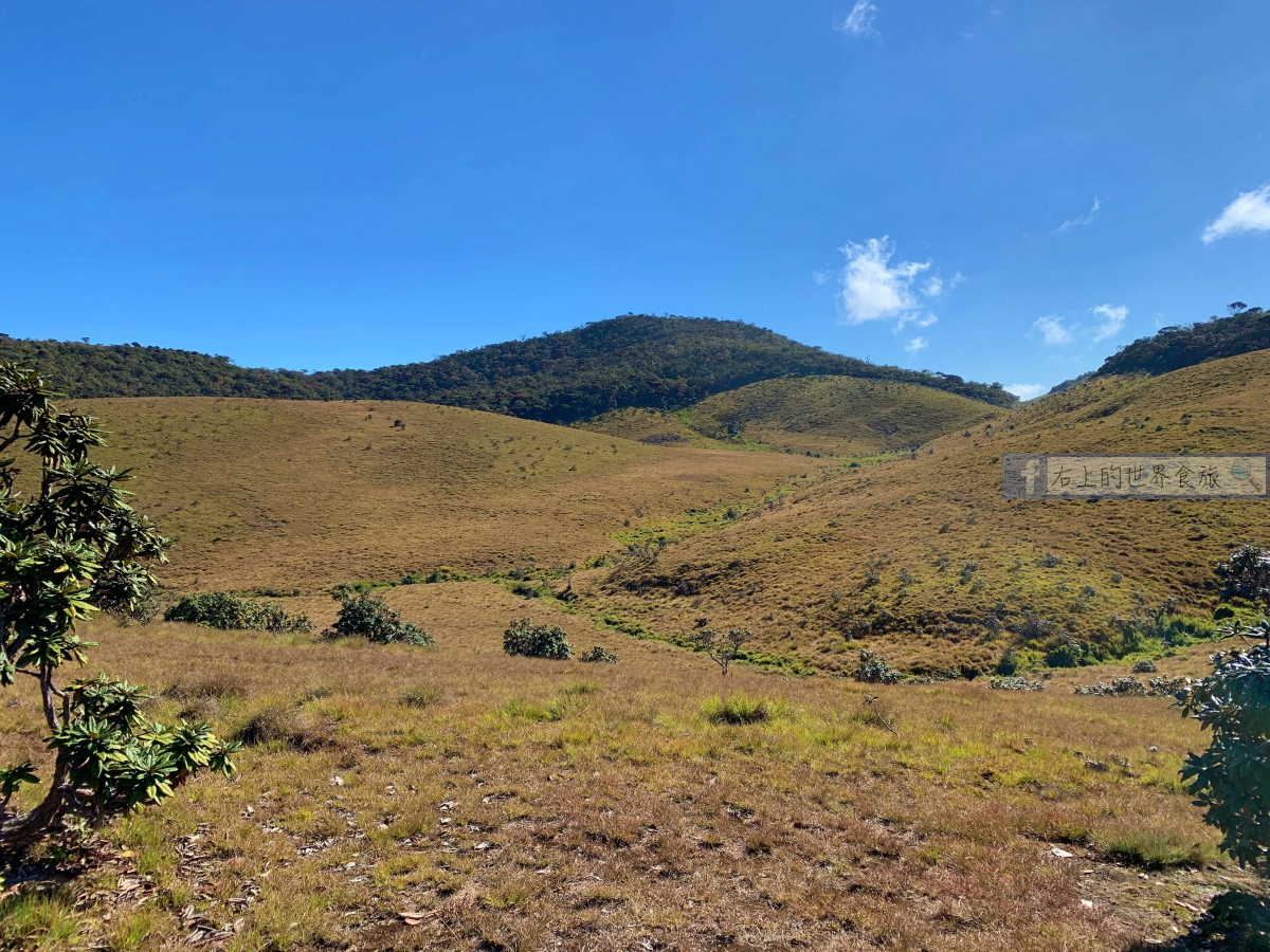 斯里蘭卡5|必遊世界遺產:霍頓平原.世界的盡頭(Horton Plains National Park) @右上的世界食旅