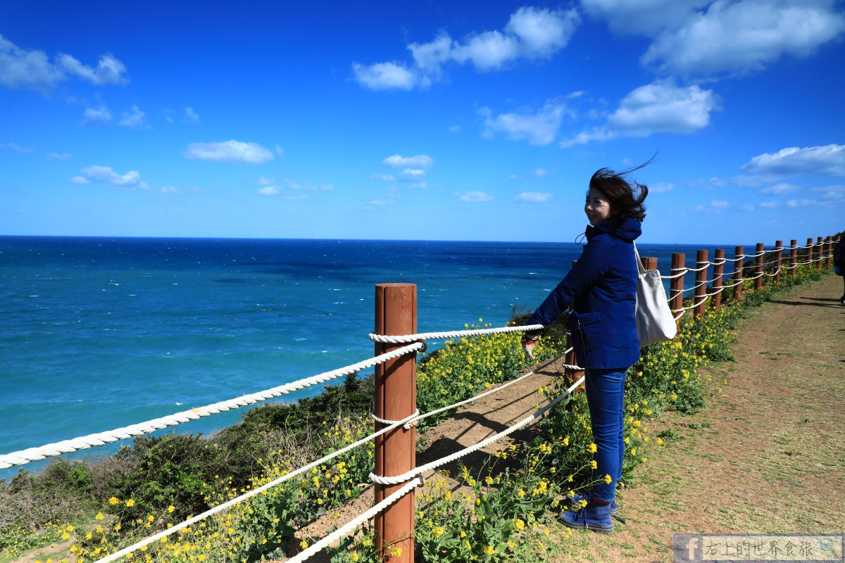 濟州島旅遊-犀牛峰海畔油菜花田散步.花浪海浪美景看不完 @右上的世界食旅