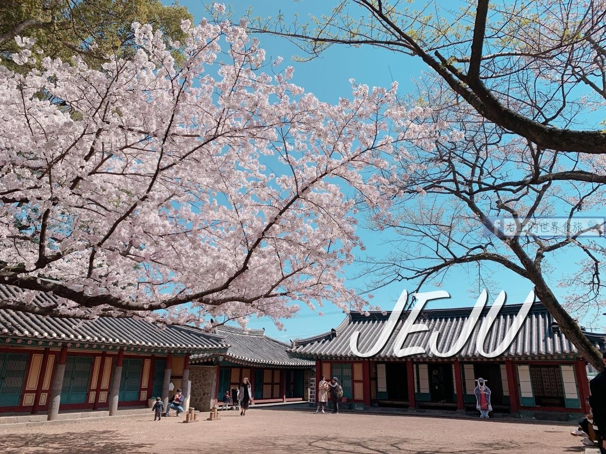 濟州島-免費賞櫻勝地:新山公園&神話原點:三姓穴