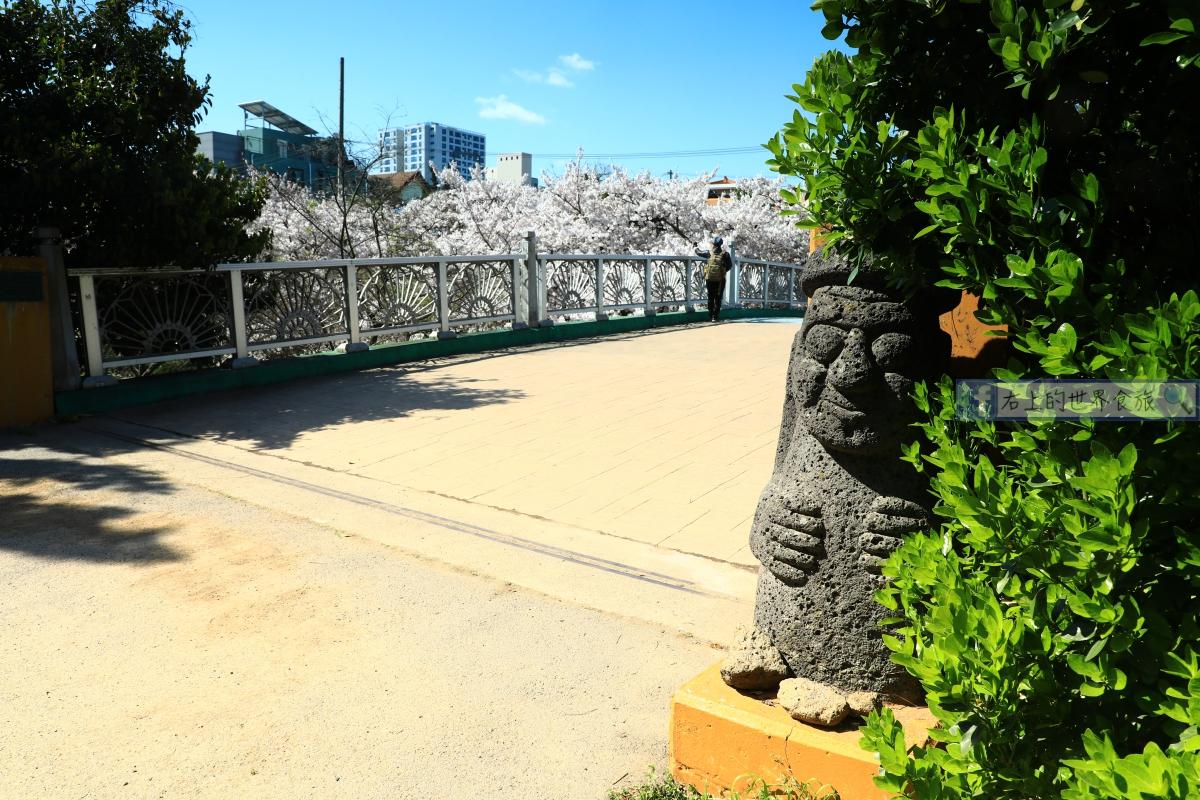 濟州島-免費賞櫻勝地:新山公園&神話原點:三姓穴 @右上的世界食旅