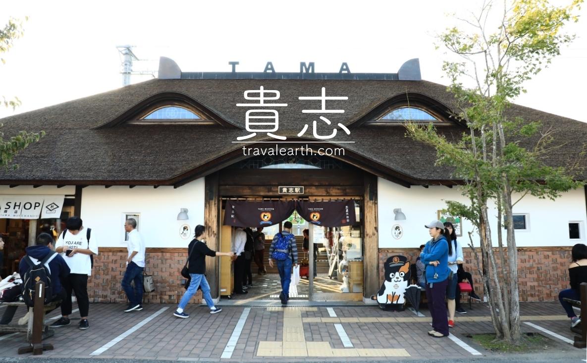 貴志貓車站半日旅-貓站長與專屬列車.前往貓奴夢想之地:和歌山電鐵貴志川線