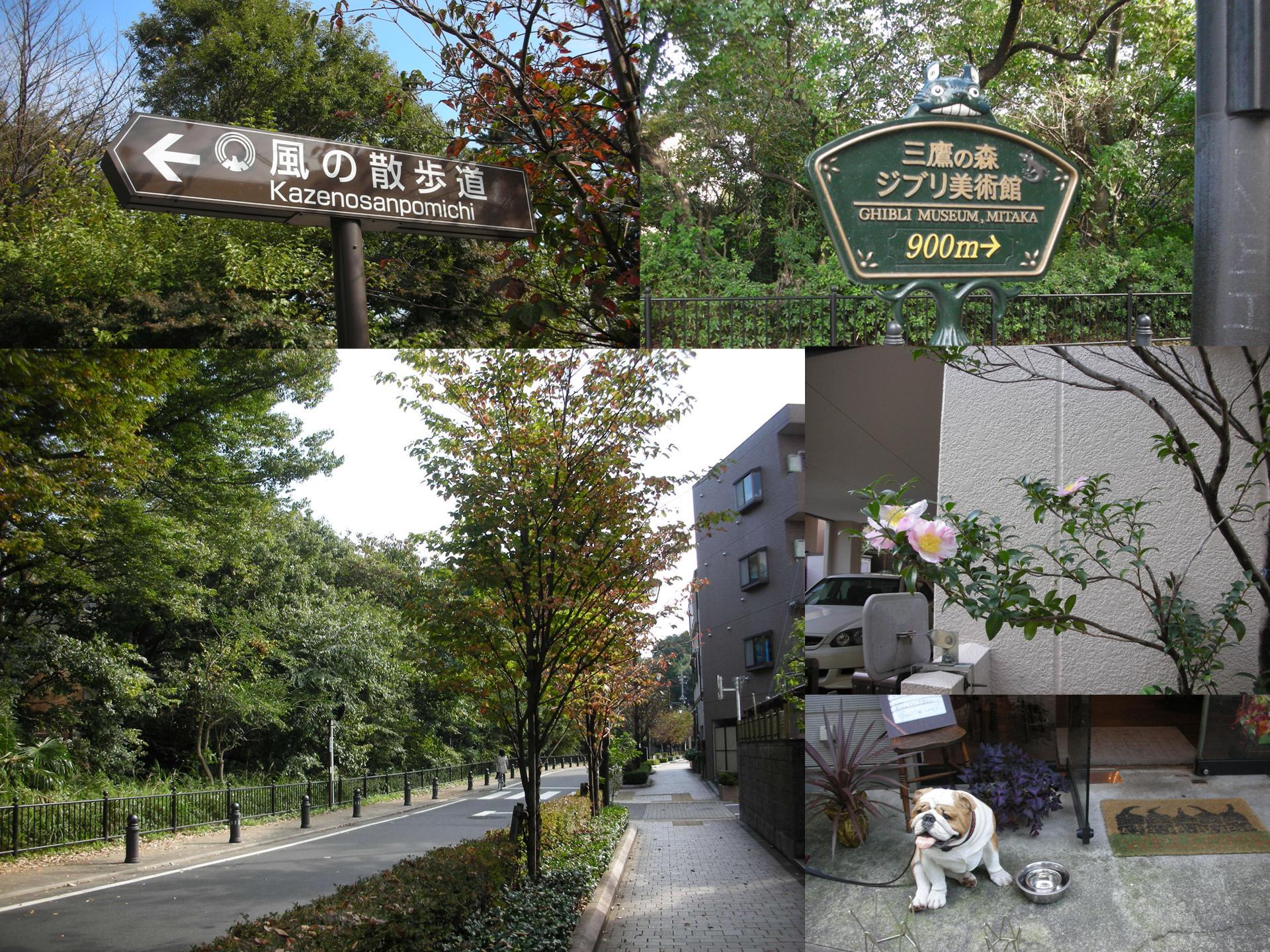 2007/11東京單人行D3-1~宮崎駿美術館&趕集般的原宿、表參道、銀座 @右上的世界食旅