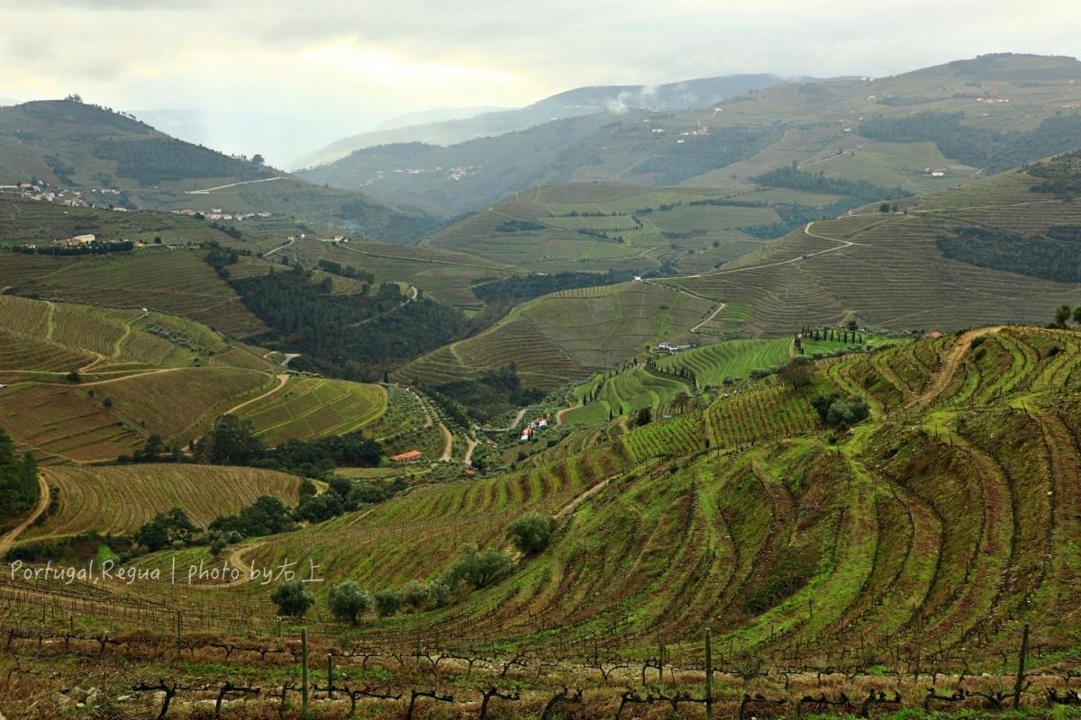 葡萄牙旅遊的5個理由+11天自由行規劃、美食、旅遊須知&里斯本住宿推薦 @右上的世界食旅