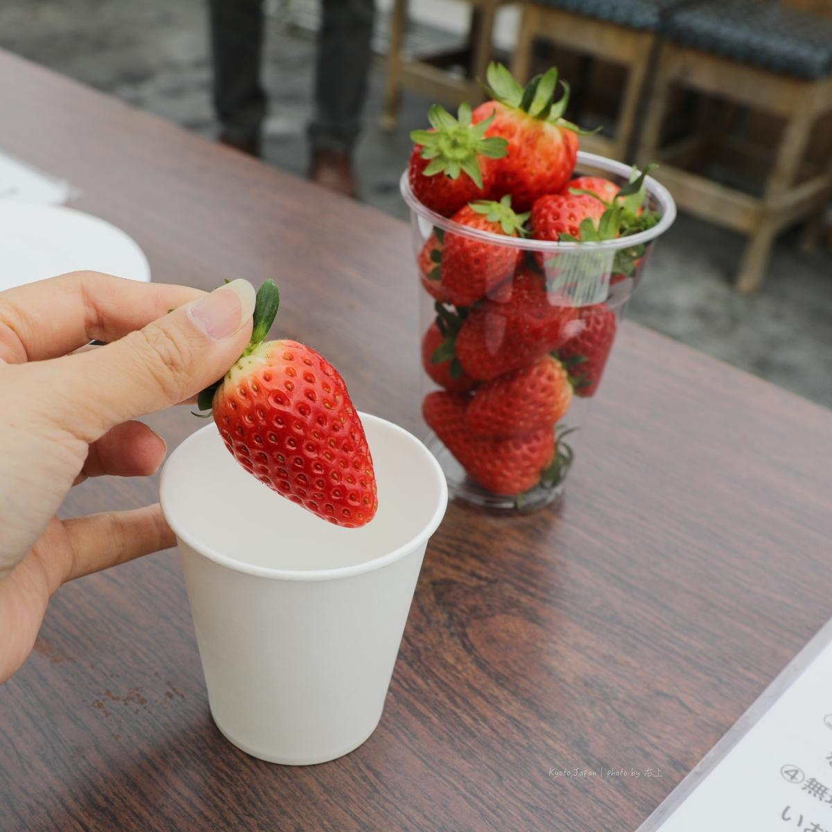 京都採草莓吃到飽.搭纜車看日本國寶:石清水八幡宮半日遊 @右上的世界食旅
