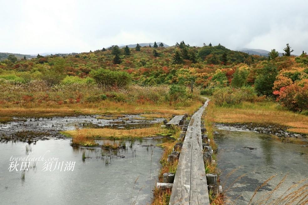 秋田超隱藏絕美秘境!須川湖、濕原秋季色彩繽紛的絕景