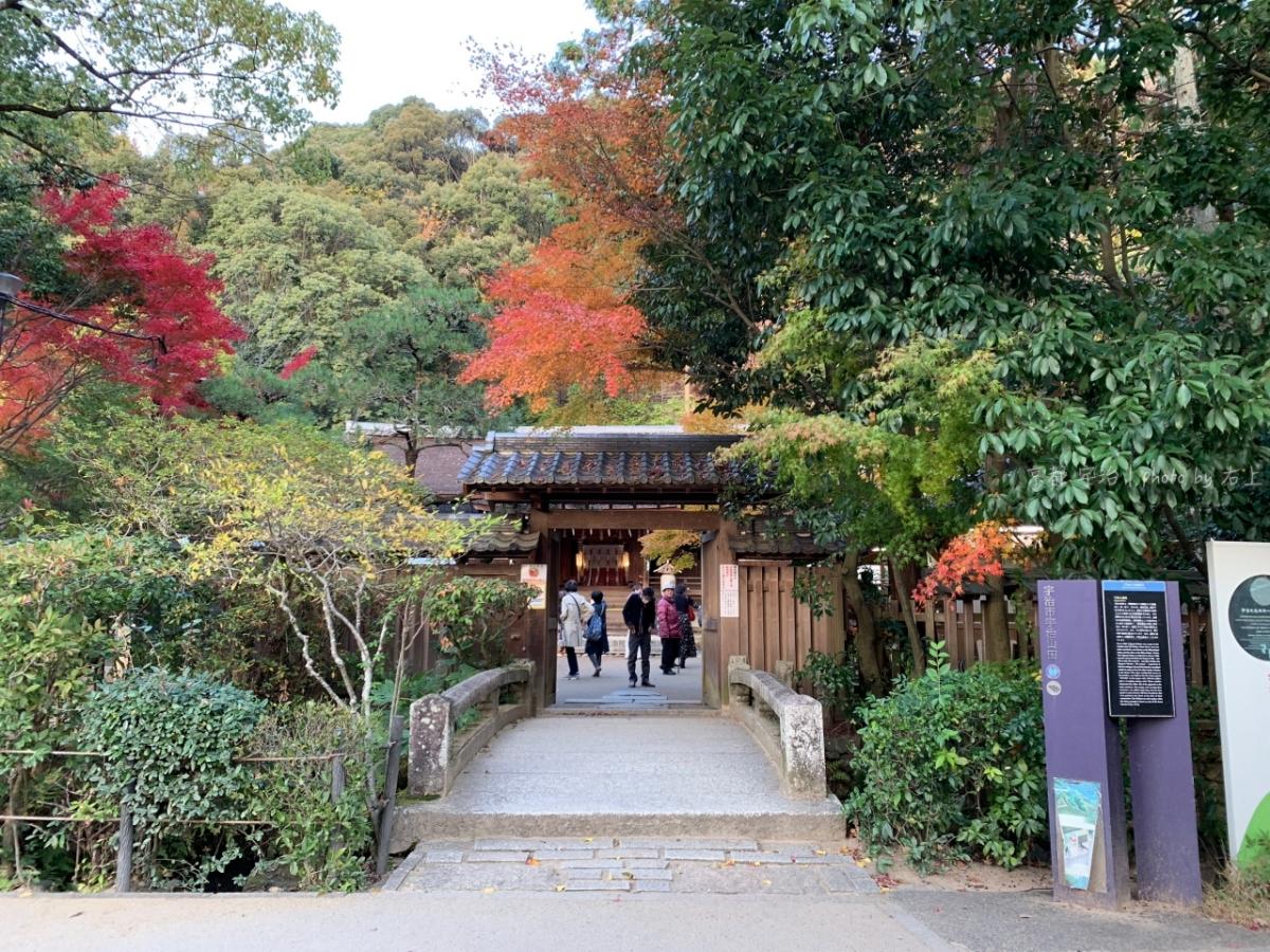 京都人氣賞櫻&賞楓:宇治上神社.宇治神社,花季就是要配抹茶來點養眼的! @右上的世界食旅